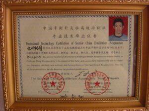 「平衡針灸学(中国老年学学会平衡鍼灸学委員会・中国保健科学技木学会)」修了